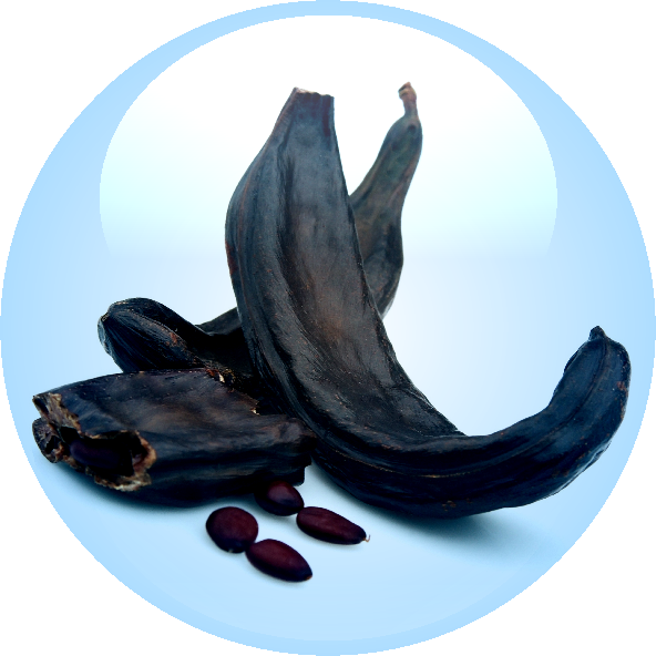Carob Tree Seed Extract