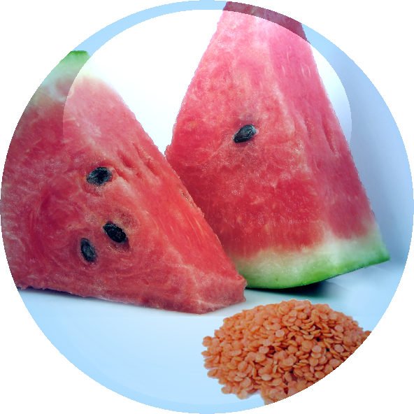 Watermelon & Lentil Fruit Complex - 18.01.2016